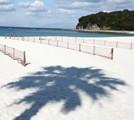 海と砂浜の画像