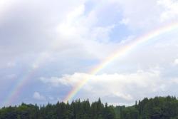 虹の夢を見たときの夢占い・夢診断