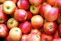 りんごの夢を見たときの夢占い・夢診断