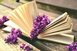 本の夢を見たときの夢占い・夢診断