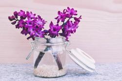 花瓶の夢を見たときの夢占い・夢診断