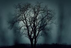 暗い色の夢を見たときの夢占い・夢診断
