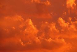 オレンジの夢を見たときの夢占い・夢診断