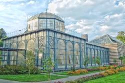 植物園の夢を見たときの夢占い・夢診断